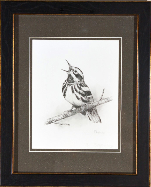 Black and White Warbler  Print by Albert Faggard