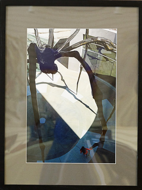 Third Place - Encounter with Maman by Janet Clements, Photograph, $150